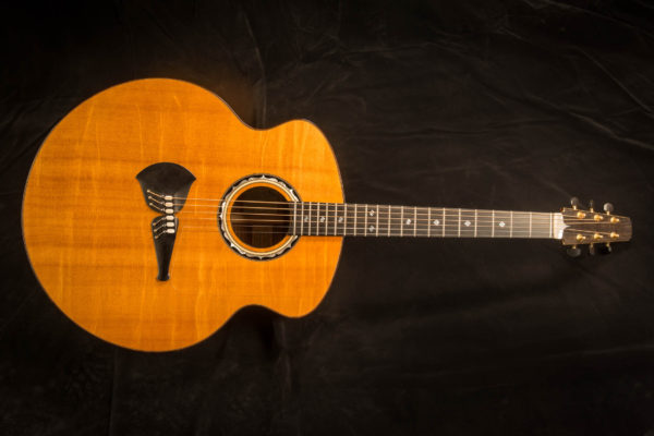 Steve Klein Personal Guitar
